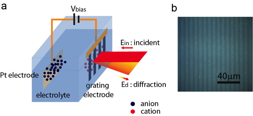 Schematic illustration of the spectroscopy design with graphene grating: a)Electrochemical cell and spectroscopy configuration (Pt = Platinum); b) Optical microscopic image of a graphene grating on fused silica. Credit: Feng Wang, Berkeley Lab