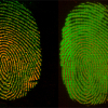 Images of fingerprints showing the change in distribution of palmitic acid and the more immobile waxy residue.