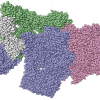 Depiction of protein complexes